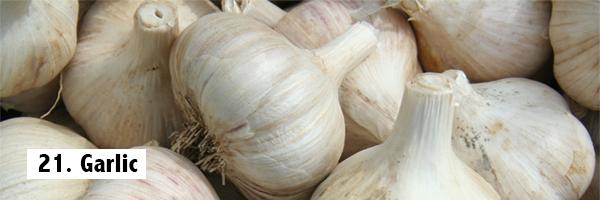 garlic-best-fat-burning-foods