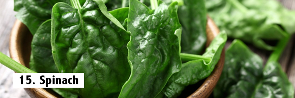 spinach-best-fat-burning-foods